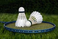 picture of badminton racket